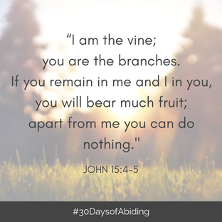 30 Days of Abiding